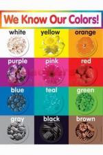 Learning-Materials--Colors-Chart-Grade-Pk-5--TF-2503_L